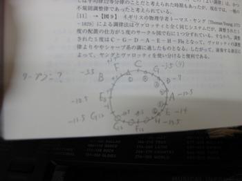 IMG_5035.jpg