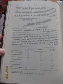 フレットの本、ガットフレット化 008.jpg